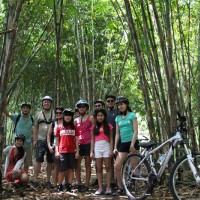 bamboo forest - lori's group
