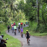 group bicycle tour