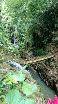 bamboo bridge waterfall