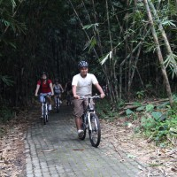 bike tour bamboo forest
