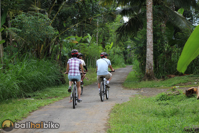 Best Cycling Tour In Bali Rural Discovery On Bike At Its Best Singapore