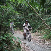 fun riding at bamboo forest