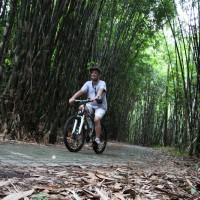 bamboo forest riding