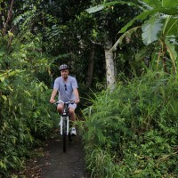 cycling through plantation