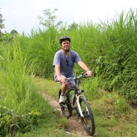 Bill's rice paddies track