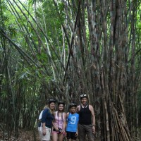 family photo at bamboo forest