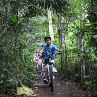 cycle through plantation