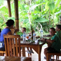 lunch at restaurant amid rice paddies