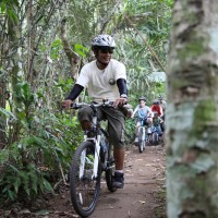 ride through jungle