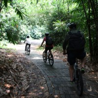 bike tour at bamboo forest