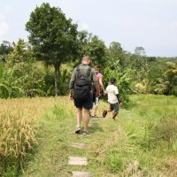 short trekking through rice fields