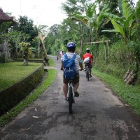 bali village's back roads #2
