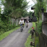 bali village's back roads #3