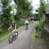 bali village's back roads #4