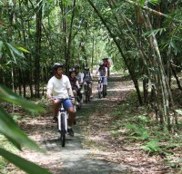 bamboo forest cycling routes #4