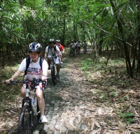 bamboo forest cycling routes #5