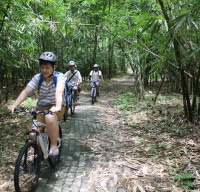 bamboo forest cycling routes #6