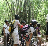 photo session at bamboo forest #2