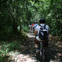 bike trips amid bamboo forest #4