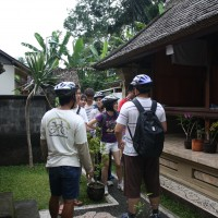 house compounds of penglipuran #2
