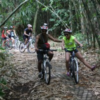 bamboo forest cycling #1