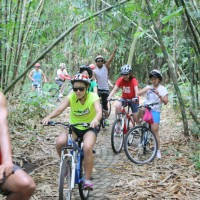 bamboo forest cycling #3