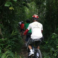cycle through plantation #2