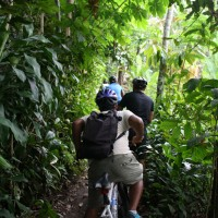 cycle through plantation #6