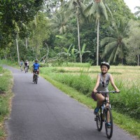 rice paddies cycling #5