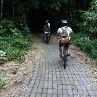 Bali bike inside the forest #2