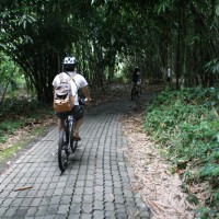 Bali bike inside the forest #3