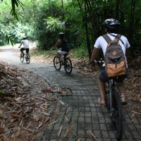 Bali bike inside the forest #4