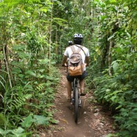 Cycling through bali plantations #1