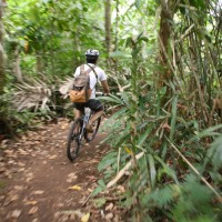 Cycling through bali plantations #2