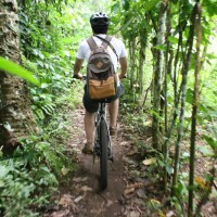 Cycling through bali plantations #3