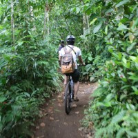 Cycling through bali plantations #4