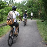 downhill cycling bali