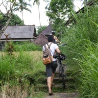 rice fields bike track