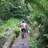 Hidden back roads of Bali