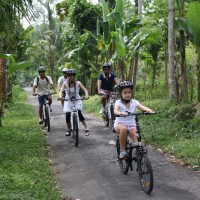 green countryside bike tour