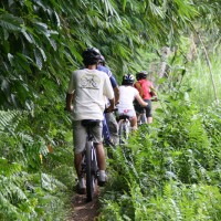 Off-roads bali cycling tracks #5