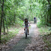 bamboo forest bike routes #3