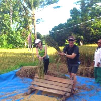 Joining Balinese farmers at works photo #8