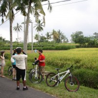 break at the paddy fields