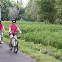 cycling through rice paddies