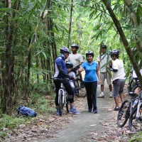 Bali cycling tour inside bamboo forest