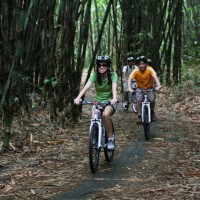 Bamboo forest cycling with Shirley