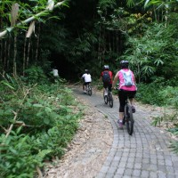 Bamboo forest cycling with Karen