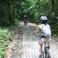 Bike trips inside bamboo forest with Tapan