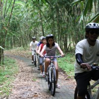 Bamboo cycling tour with Gergana and family